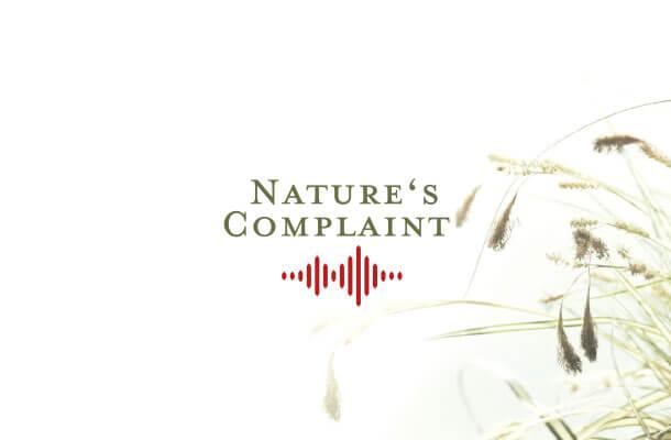 paper-natures-complaint-visitenkarte-01