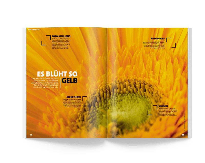 paper-ringfoto-magazin-03